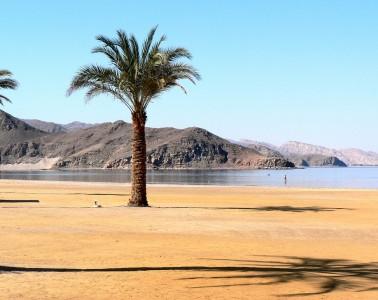 egypt-782954_1280